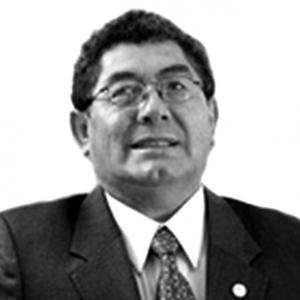 Alfonso Mardones Lazcano